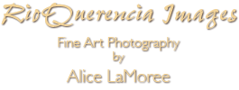 RioQuerencia Images, Fine Art Photography by Alice LaMoree